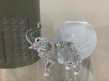 Swarovski Crystal Figurine Elephant With Trunk Up 7640 000 001 / 191371 MIB W/CA