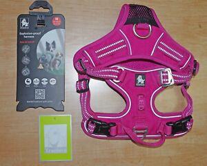Truelove Chai's Choice Outdoor Dog / Pet Harness - Medium, Pink