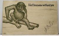 MONKEY I Feel Lonesome Without You 1907 UDB  Jamestown / Tadmor OH Postcard C19