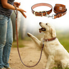 Genuine Leather Dog Collar and Leash Lead Adjustable for Medium Large Dogs Brown