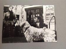 """DANIÈLE DELORME - GÉRARD BLAIN """"VOICI LE TEMPS DES ASSASSINS"""" PHOTO PRESSE 13x18"""