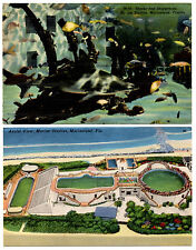 MARINELAND Marine Studios Florida Lot of 2 Vintage Linen Postcards Aerial View