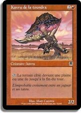 MTG Magic APC FOIL - Tundra Kavu/Kavru de la toundra, French/VF