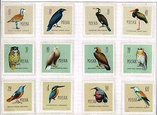 Poland Fauna Birds 12 stamps set 1960 MNH