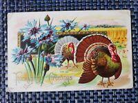 1914 Embossed Thanksgiving Greetings Postcard Turkey Flowers