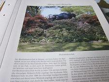 Bremen Archiv 6 Alltag 6056 Rhododendron Park