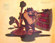 Tasmanian Devil Taz Hd Wb Looney Tunes Warner Bros cartoons vtg t-shirt iron-on