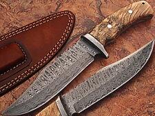 CUSTOM Made Damascus Steel Hunting Knife Burl Olive Wood Hand 55-60 HRC Hardness