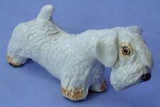 "Sealyham Cesky Terrier Basil Matthews England Dog 4"""