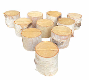 Birch Tree Place Card Holders- Weddings, Events, Thanksgiving, Photos Set of 10
