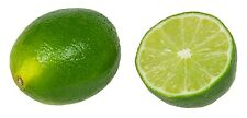 Lime 2lb Fruit Powder Freeze Dried Citrus  Vitamin C Phytos PURO BRAZIL Non GMO