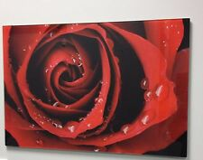 Red Rose Glass Art / Glass Image / Glass Wall / Tempered Glass Picture