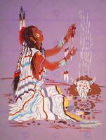 PAINTING DRAWING NATIVE AMERICAN INDIAN FIRE SHAMAN DRESS POSTER PRINT BB8140B