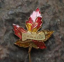 Antique Canada Maple Leaf Autumn Colours Fall Canadian National Emblem Pin Badge