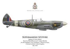 Print Spitfire Mk XVI, P/O Cecil Zuber, No 602 Squadron RAF, 1945 (by G. Marie)