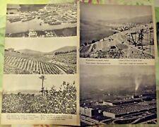 1962 Carte & Image Italie Agriculture & Forêts,Vignobles Fleurs Citronniers