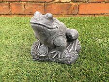 RANA su un registro ornamentale da giardino LATTICE solo MUFFA / Mold wa39l