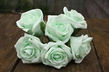 6 x Pallido Verde Menta Colourfast Schiuma aperto Cottage Roses 6cm