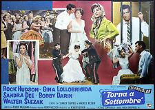 CINEMA-fotobusta TORNA A SETTEMBRE lollobrigida, hudson