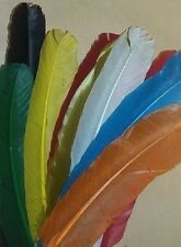 UFS Crafts: American Feathers 25cm 10pcs mixed colours (Crafts Weddings Art)