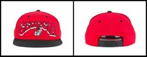 Top of the World ~ Georgia Bulldogs Old Arch Snapback Cap $25 NWT
