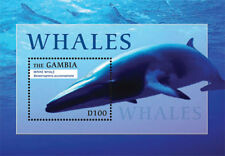 Gambia 2012 - Whales Stamp Souvenir Sheet of 1 MNH