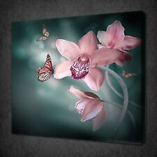 BEAUTIFUL ORCHID BUTTERFLIES MODERN CANVAS WALL ART PICTURE PRINT READY TO HANG