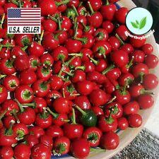 50+ seeds RED CHERRY SWEET PEPPER GARDEN VEGETABLE SEEDS - NON-GMO, HEIRLOOM USA