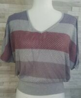 Express Women's Sweater Silver Striped Short Sleeve Lightweight Size Small