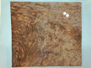 CONSECUTIVE SHEETS OF AMERICAN BURR WALNUT VENEER 45 X 41 cm AM#280 DASHBOARD