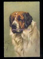 an0334 - Dog - Saint Bernard, No.114 - Artist Arthur Wardle - postcard
