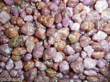 Natural Purplish Ruby Small Nugget Rough Stone from Afghanistan 250 gram Lot