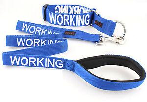 Dog Semi Choke Collar Leash Set Color Coded Blue WORKING Warning Heavy Duty New