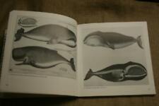Buch historischer Walfang, Wale, Seefahrt, Walfänger, Werkzeuge, Schiffe, Bilder