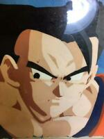 Dragon Ball Z Son Gohan Cel Picture Japanese Anime From JAPAN c2249