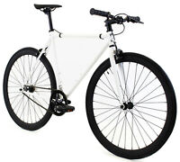Golden Cycles Fixed Gear Single Speed Bike Bicycle Shocker 41 To 63 CM NEW