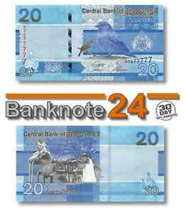Gambia 20 Delasis 2019 Unc , Banknote, New, Birds Issue Pn 39a