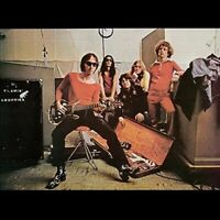Teenage Head	Flamin Groovies (180 Gram Vinyl) (New Vinyl)