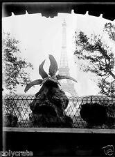 Paris Tour Eiffel paris sculpture oiseaux - négatif photo verre plaque an. 1930