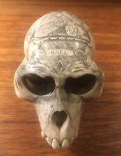 Antique Vervet Monkey Skull Taxidermy with Nautical Scrimshaw