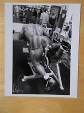 """DAVE PALUMBO muscle bodybuilding SIGNED muscular photo 8"""" X 10"""" by IRVIN GELB"""