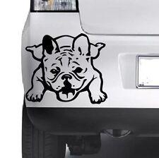 French Bulldog Vinyl Sticker Decal, Car Decal, Bumper, Laptop,Window, Wall JMD..