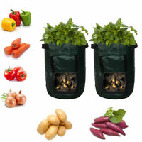 1pc Green Potato Grow Plant Tomato Sack Spuds Root Pot Vegetable Bags 10 Gallon