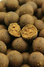 Northern Baits Caliente Spicy 1Kg Boilies Listo Hecho Carpfishing Superior Linea