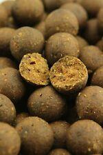 Northern Baits Hot Spicy 1Kg Bouillettes Prêt Fabriqué Carpfishing Haut Ligne