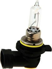 Headlight Bulb fits 2004-2007 Nissan Maxima  WD EXPRESS