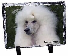 White Poodle Dog 'Yours Forever' Photo Slate Christmas Gift Ornament, AD-POD5ySL