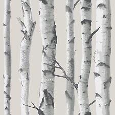 Nuwallpaper Bouleau Arbre Autocollant Papier Peint Gris NU1650 fine decor Neuf