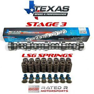 Texas Speed LS Truck Stage 3 Cam Kit GM LS6 Valve Springs & Seals 4.8L 5.3L 6.0L