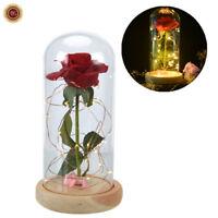 WR La bella y la bestia Enchanted Rose LED Bóveda de cristal iluminada